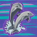 Shiny Dolphins