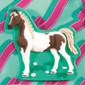Horse Club Girls